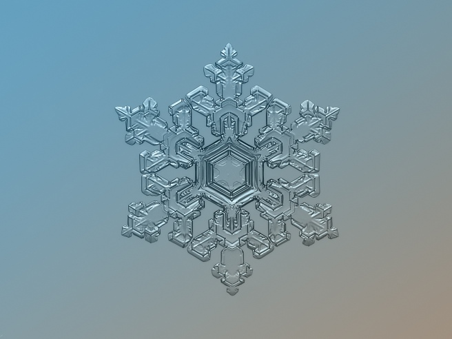 snowflake_macro_ornate_pattern_Olga-Syntina-and-alexesy-Kljatov _ CC