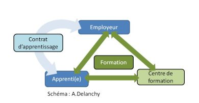 schéma_employeur_apprentie_cfa